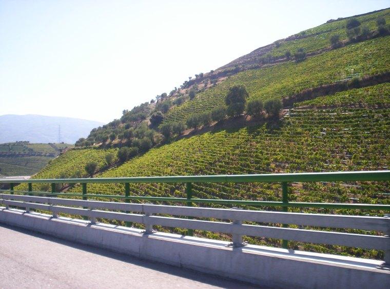 Douro 3 a 5 Agosto 2009 105