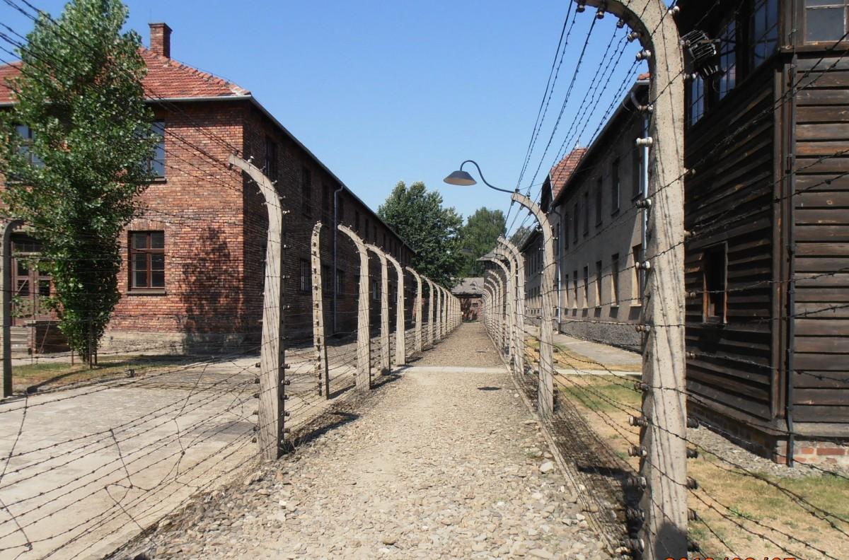 Auschwitz/Birkenau - para além do impensável