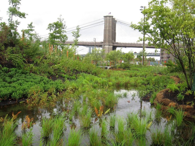 BBP-Natural-Ecosystems-Overlook-the-Bridge